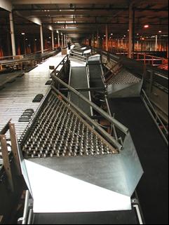 Upgraded sortation system